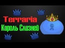 Terraria Expert Король Слизней