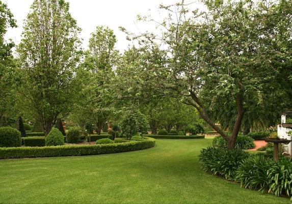 повторение растений в саду