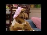 Alf Quote Season 1   Episode 16 Шапочка