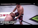 Fabricio Werdum vs Mark Hunt (Boxing Vines) l vk.com/boxingvines