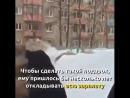 Борец с коррупцией из МВД подарил девушке белый Мерседес