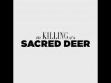 ТВ ролик (1)  — «Убийство священного оленя» (2017)
