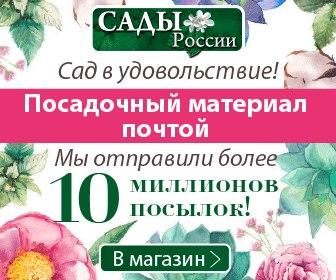 Челябинск Магазин Сад Огород Интернет Саженцы