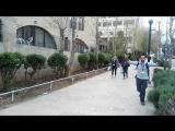 Таглит EZ37-519 зима. Мы в Иерусалиме