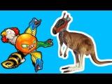Приключения ОГРОМНОГО ОСЬМИНОГА в Австралии Веселое видео для детей в необычной игре про Осьминога