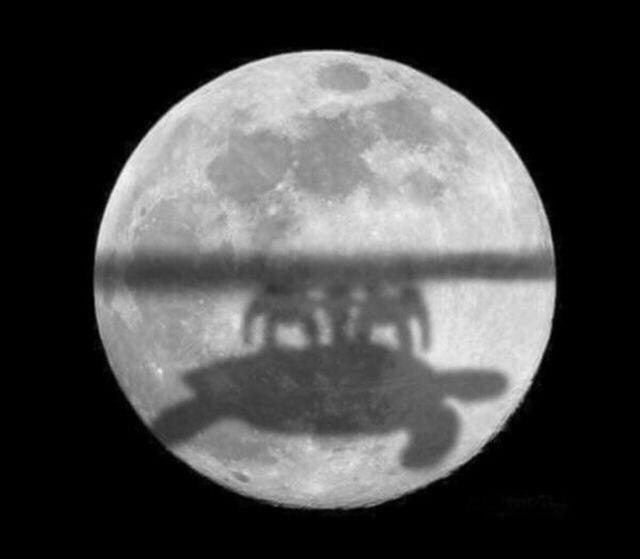 Бразильские учёные доказали что Земля плоская (не 1 апреля)) HekZ50Q4_go