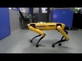 Робот SpotMini компании Boston Dynamics научился новым трюкам