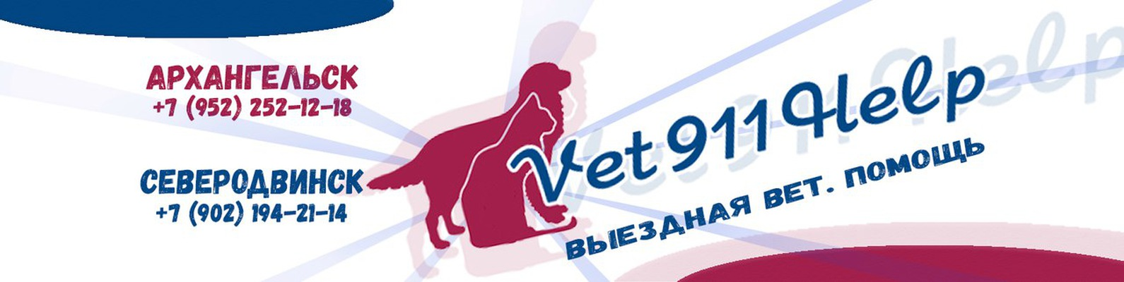 мобильная ветеринарная помощь архангельск декоративные