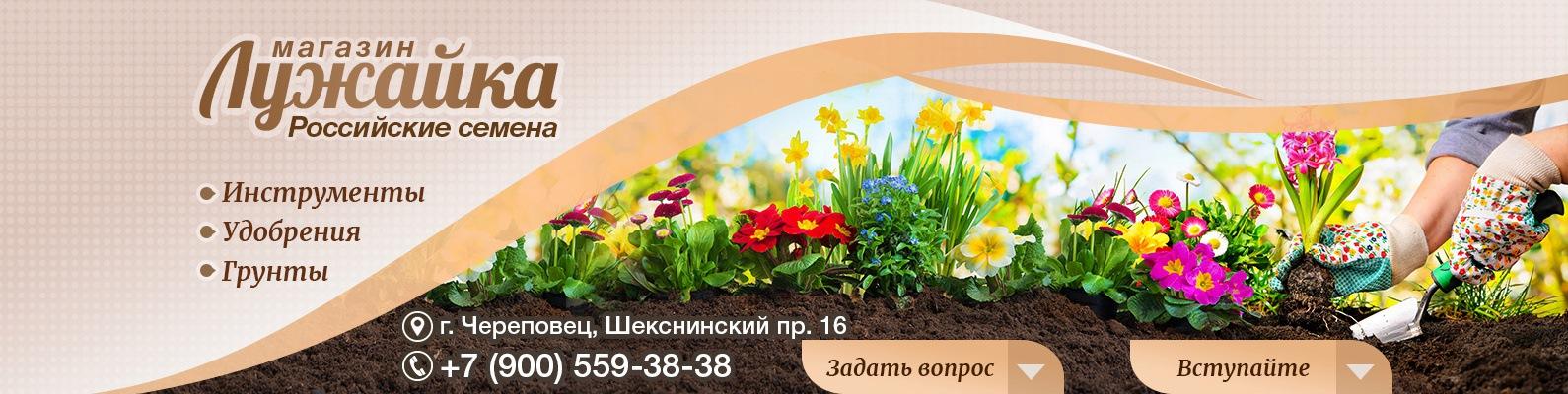 Семена  Продажа Череповец Трип Прайс Новочеркасск