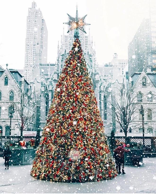 30 лучших фото рождественских Нью-Йорка, Парижа, Стокгольма и других красивых городов, изображение №7