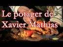 Le potager de Xavier Mathias France