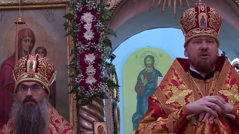 Проповедь митрополита Владимира в день прославления новомученника протоиерея Андрея Зимина