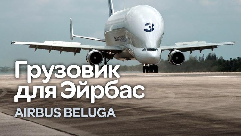Airbus Beluga Некрасив но эффективен Теперь и XL