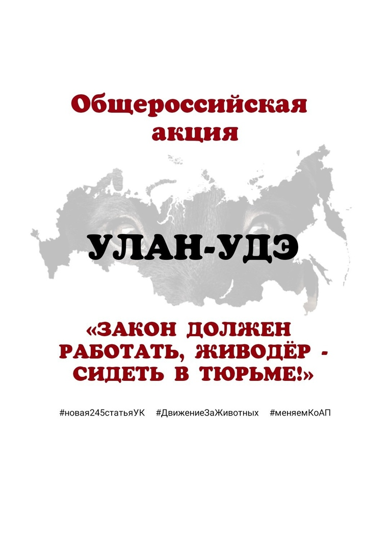 Афиша Улан-Удэ УЛАН-УДЭ. Закон должен работать, живодёр -сидеть