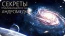 ПОТРЯСАЮЩАЯ ГАЛАКТИКА АНДРОМЕДЫ [M 31, NGC 224]
