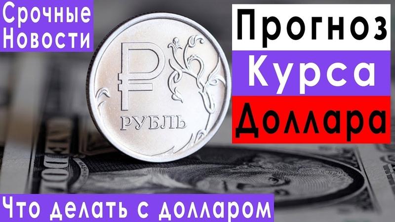 Прогноз курса доллара евро рубля на сентябрь 2019 фундаментальный анализ акций Северстали и Роснефти