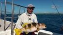 Мировая рыбалка Сезон 4 Рыбалка на острове Провиденс