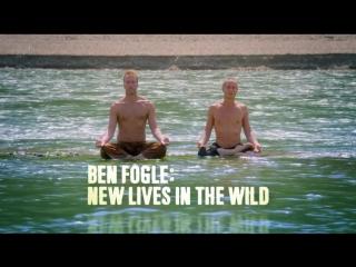 New lives in the wild / побег от цивилизации / буддийский монах