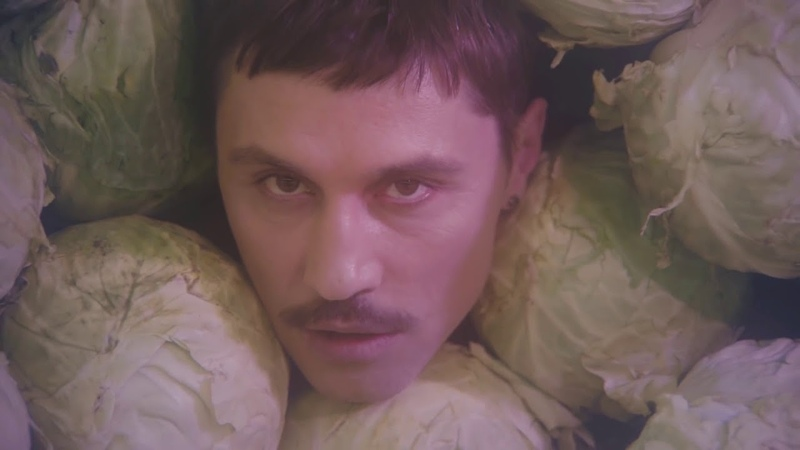 Дима Билан - ПРО БЕЛЫЕ РОЗЫ ( премьера клипа 2019 ) | без лишних кадров | Тимми ДАК 2