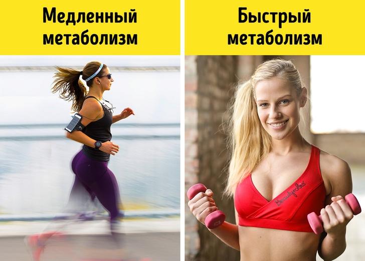Кардио тренировка, диета и жиросжигатели. Зина руденко.