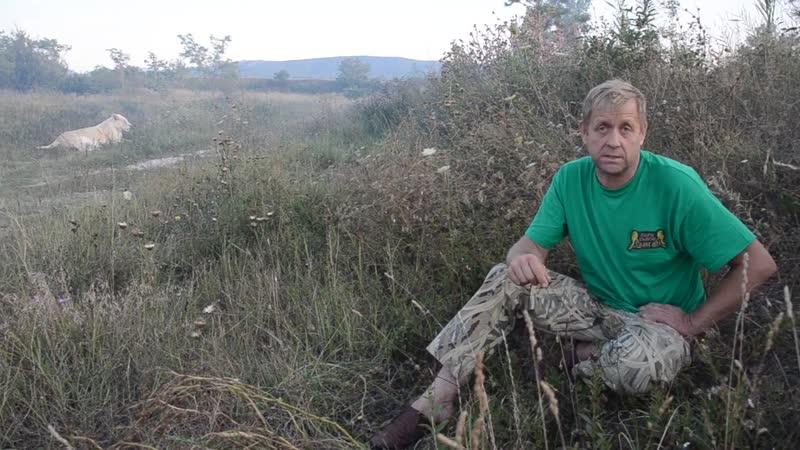 Решение суда О СНОСЕ БУКВ Парк львов Тайган