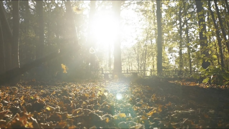 Autumn Leaves official video Eva Cassidy the London Symphony Orchestra