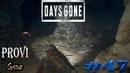 Days Gone ► Волчье логово ► 47