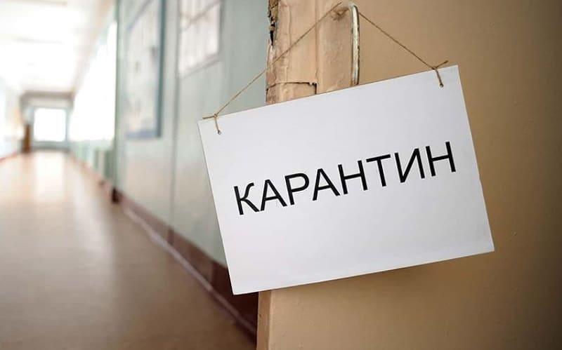 В школах города Петровска и в учреждениях дополнительного образования продлён карантин по ОРВИ и гриппу