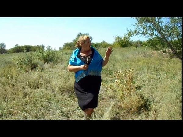 Валентина Перетокина от людей на деревне не спрятаться Красавка Калдино Саратов Владимир Паньков