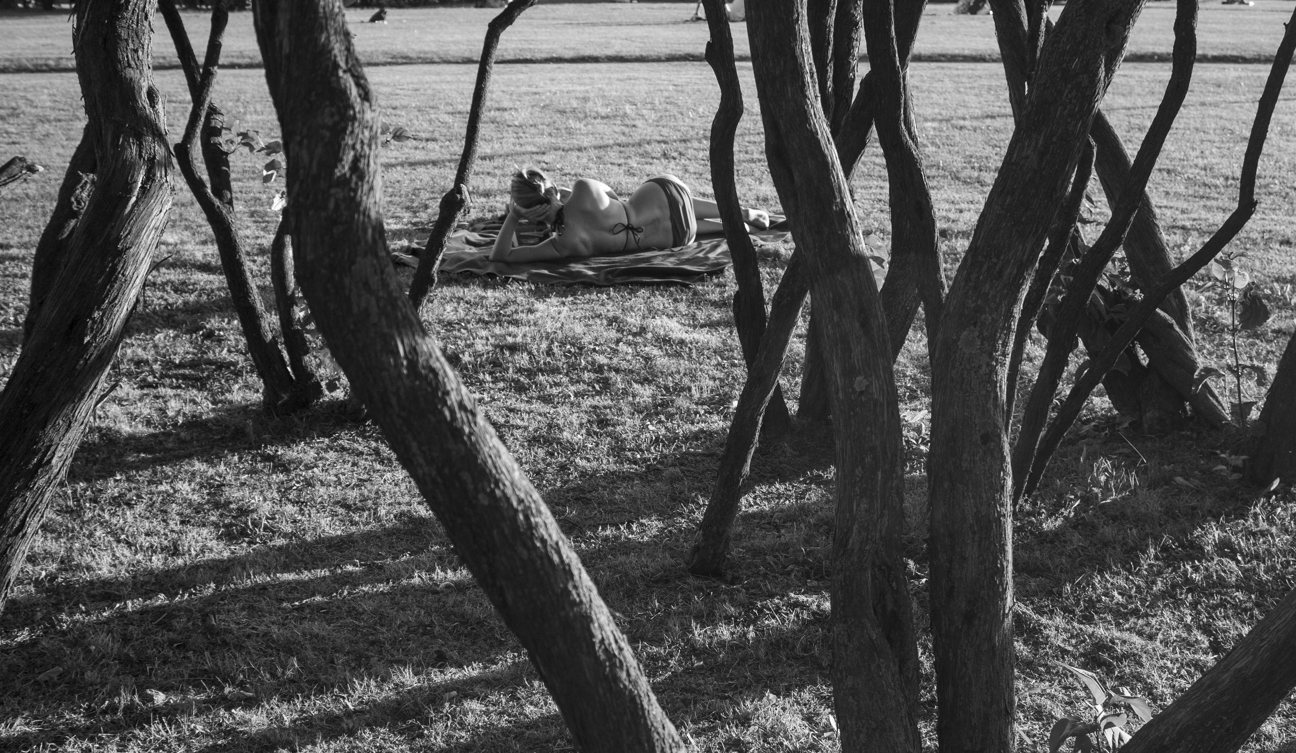 изогнутые стволы деревьев и женщина лежащая на поляне