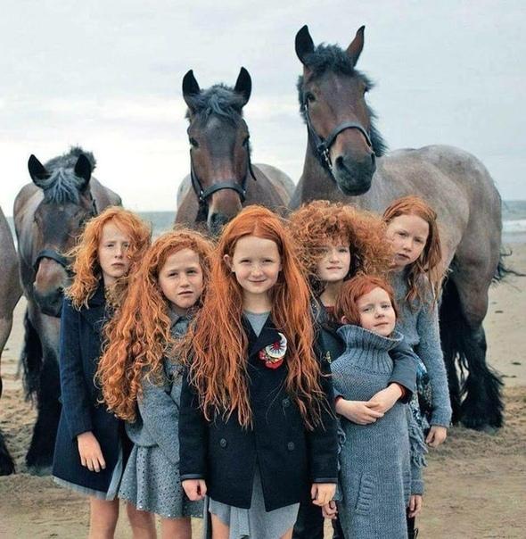 Согласно Eupedia, европейскому сайту, который исследует родословную и генетику, самый высокий процент рыжих в мире проживает в Ирландии