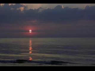 Tema de un lugar de verano percy faith[1].mp4