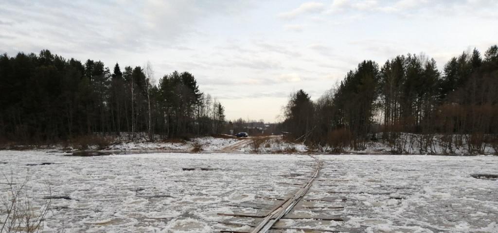Деревья леса нижегородской области фото профессиональных фотографов