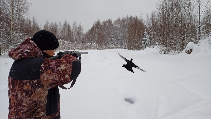 Охота на тетерева на лунках 2021. Black grouse hunting.