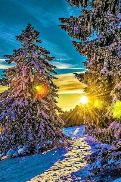 Скачать Красивые Обои На Телефон Зима