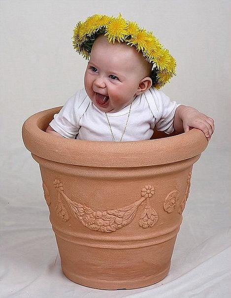 Смешные картинки детей с цветами, для