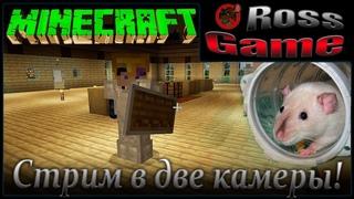 (Stream и Крысы) Тестирую новый формат, в две камеры. 😁 Строим подземелье...  - Minecraft #1.2