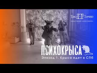 ПСИХОКРЫСА. Эпизод 1. Крыса едет в СПб