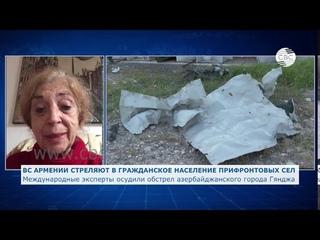 Международные эксперты осудили обстрел азербайджанского города Гянджа