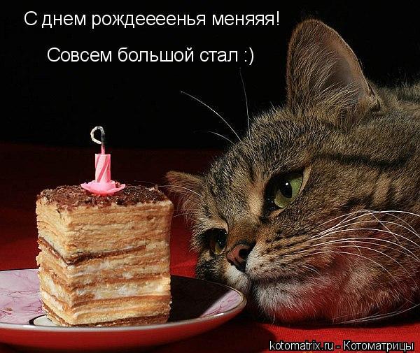 Артур Чухрий, 29 лет, Москва, Россия