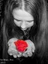 Фотоальбом Алиши Love