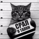 Фотоальбом Антона Крутеня