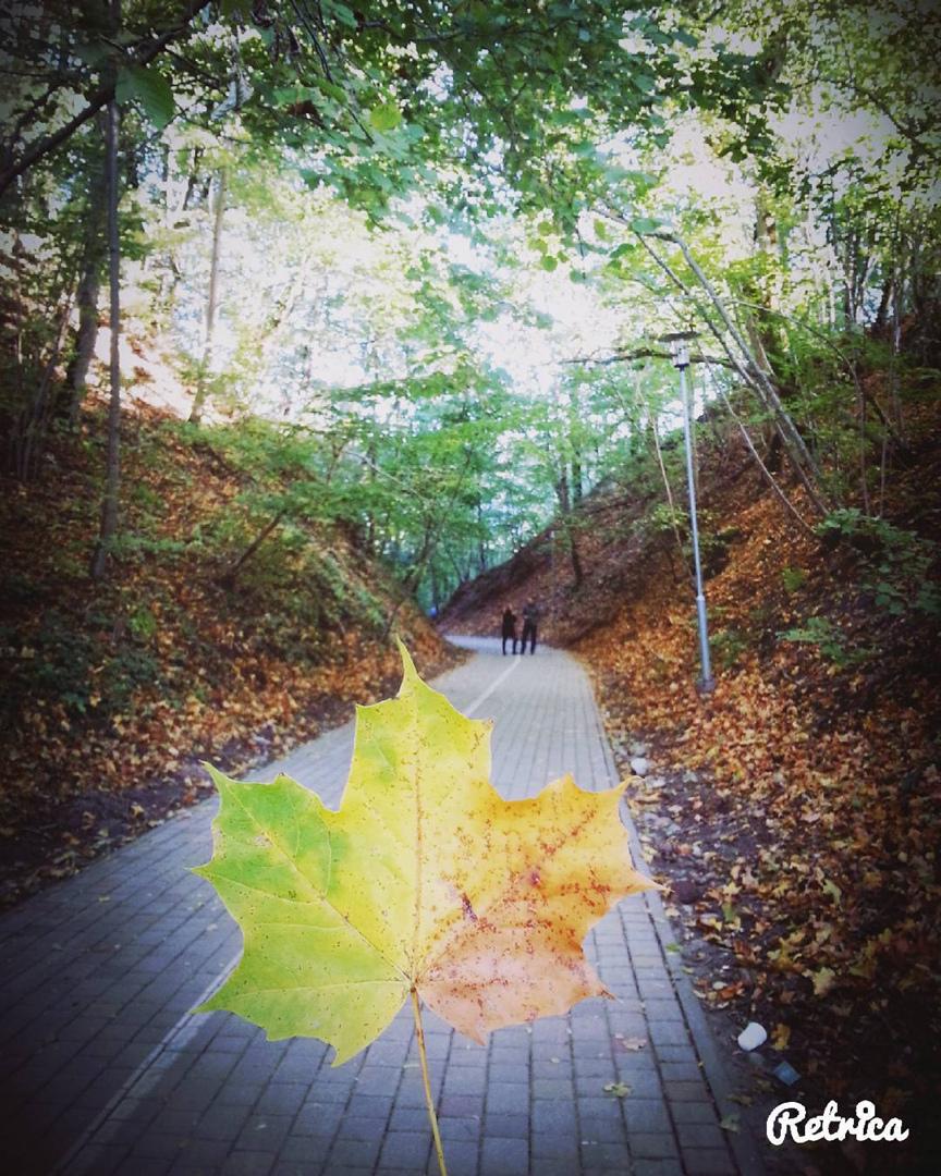 фото из альбома Alisa Jeromane №6
