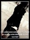 Персональный фотоальбом Ажар Қасымбаевой