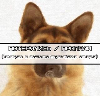 ПОТЕРЯННЫЕ 2017-2019