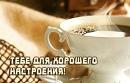 Миронова Ника | Ростов-на-Дону | 16