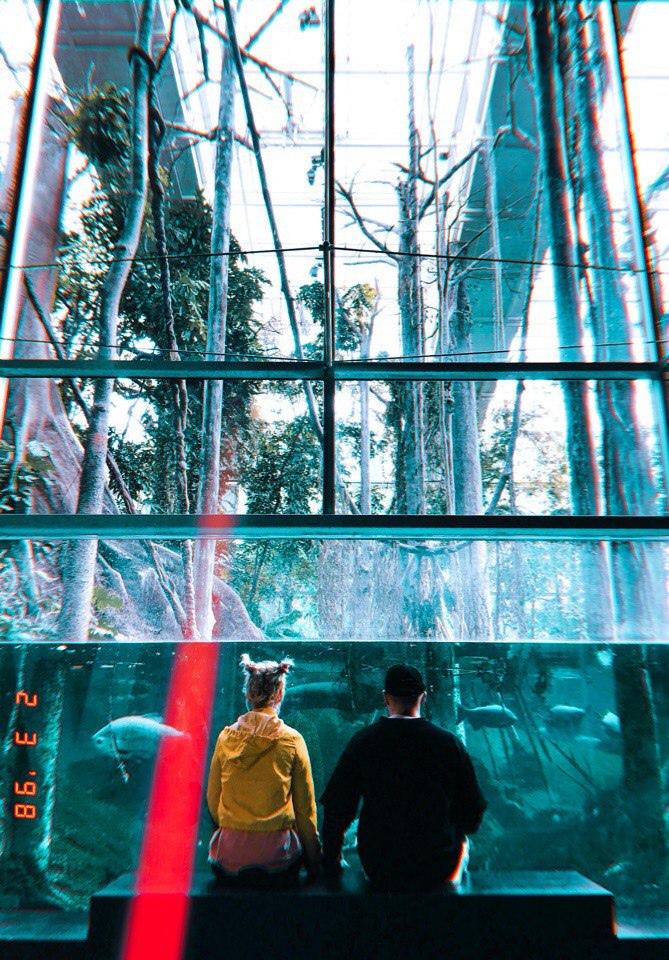 фото из альбома Дарьи Шейк №12