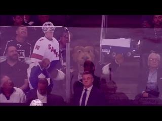 """НХЛ-2019/20. Маскот """"Кингз"""" троллит игроков и болельщиков """"Торонто""""!"""