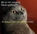 Фотоальбом Ольги Агеевой