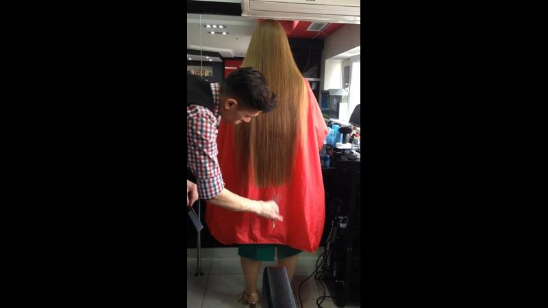 Сеченная волосы стригу с лёгкая